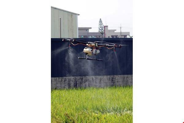 Spraying pesticides by drone saves manpower, time and chemicals.