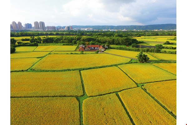 Smart Agriculture: Farming Goes  High Tech (photo by Jimmy Lin)