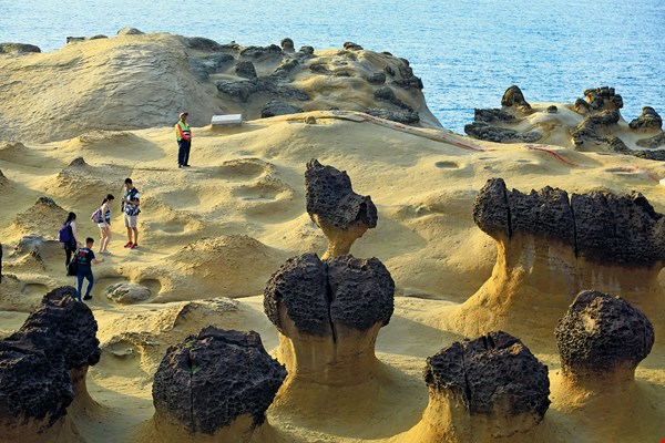 "The rocks throughout Yehliu Geopark are riven by fractures—known as ""joints""—that cut into the fragile exposed strata."