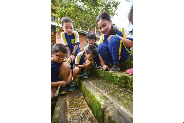 Caoling Eco-Geo Elementary School students study joints in these sandstone and travertine steps.