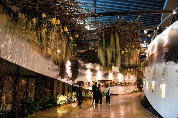 Inside the Blossom Pavilion is an orchid exhibition that showcases the strength of Taiwan's orchid industry.