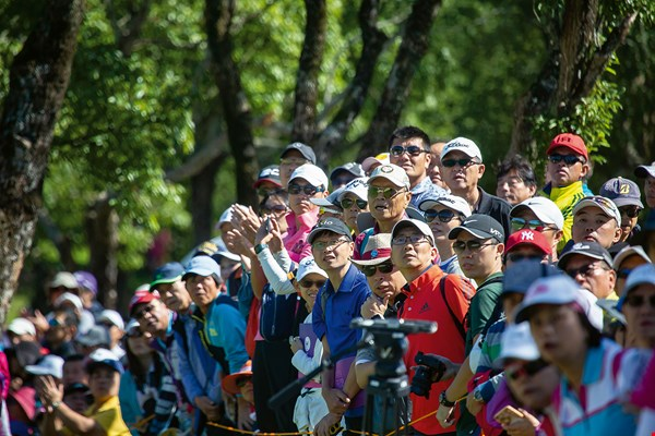 When the golfers swung their clubs, Taiwan's fans gave them their undivided attention, both following the flight of the ball and showing proper gallery etiquette.