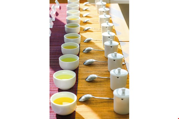 "Alishan Win's ""one-day tasting master"" experience enables visitors to try ten different varieties and roasts of Alishan teas."