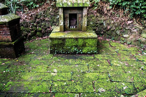 A century-old shrine to the Earth God, hidden in a forest in Fengxiang Village, in the Da­shan­bei area of Hsinchu County's Hengshan Township. (photo by Lin Min-hsuan)