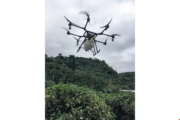 The AG1-O, developed by Aeroprobing, sprays nutrients onto tea bushes at Fu Tea in Yilan County, greatly upgrading the quality of the tealeaves and lowering labor costs compared with traditional cultivation. (courtesy of Aeroprobing)